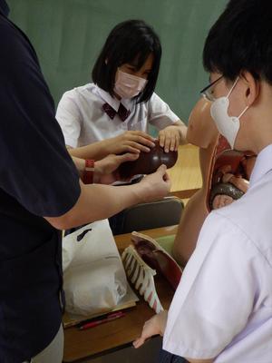理療科の授業体験の様子