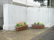 白壁に綺麗な花のプランターが映えます